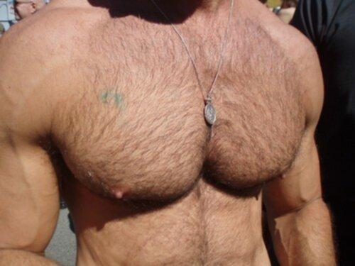 hur får man bröstmuskler