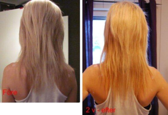 silica hår hud naglar recension